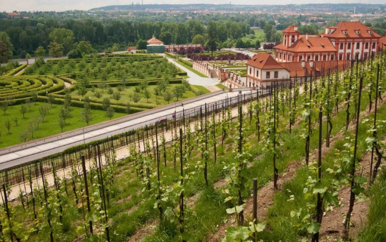 View of Troja Chateau and the the vineyards of St. Klara